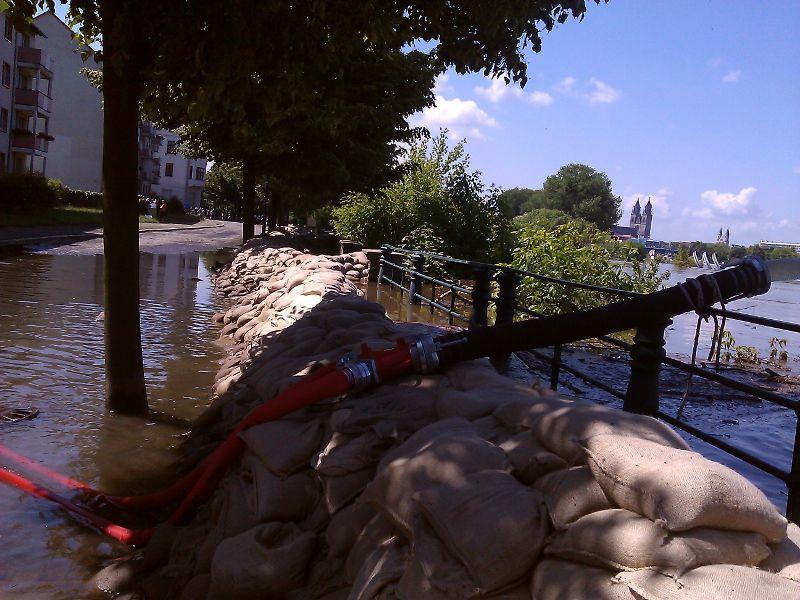 Elbe-Hochwasser in Magdeburg  Foto: Feuerwehr Magdeburg